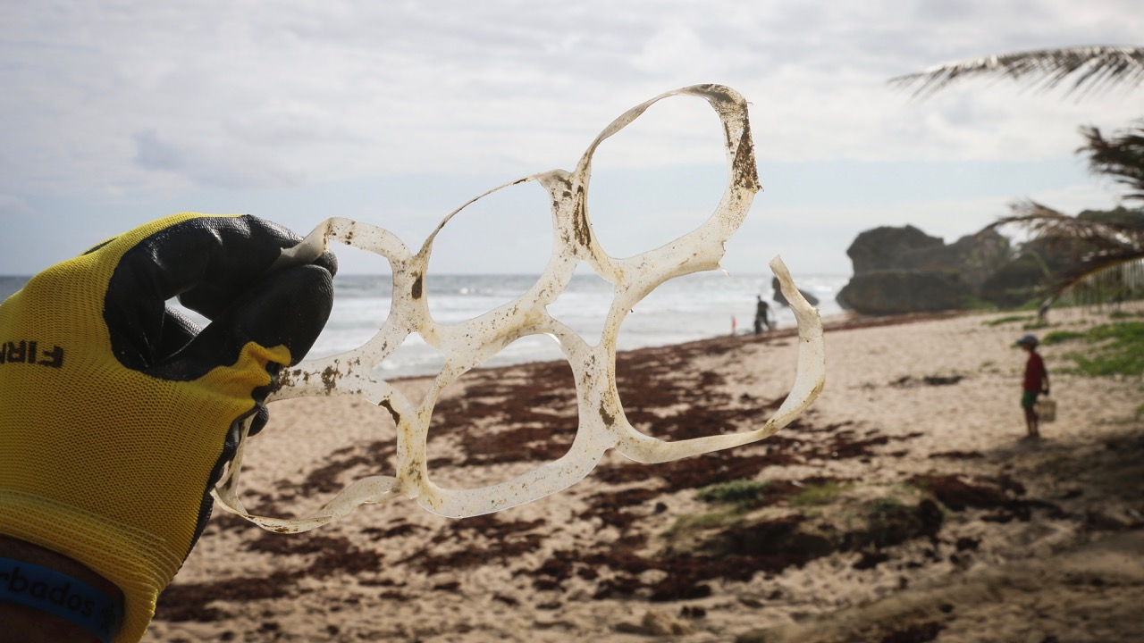 The NEMESIS project that began with a beach clean up – Baléone, France